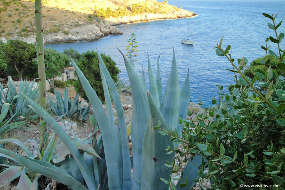 Dubovica bay, island Hvar